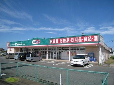 ドラッグセイムス 薮塚店