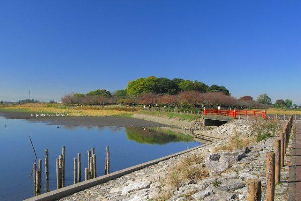 多々良沼公園
