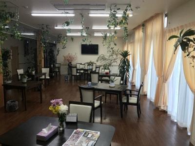 食堂は広々としており、植物・自然が感じられる作りとなっております。とても癒やされます…