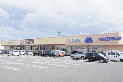 とりせん菅谷ショッピングモール