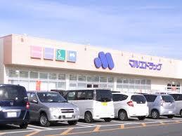 マルエドラッグ 安中郷原店