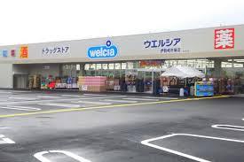 ウエルシア伊勢崎赤堀店 (ドラッグストア)